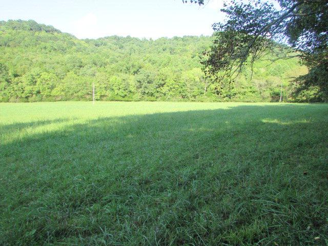 Real Estate for Sale, ListingId: 35044999, Buffalo Valley,TN38548