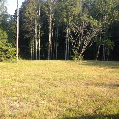 Real Estate for Sale, ListingId: 35324644, Livingston,TN38570