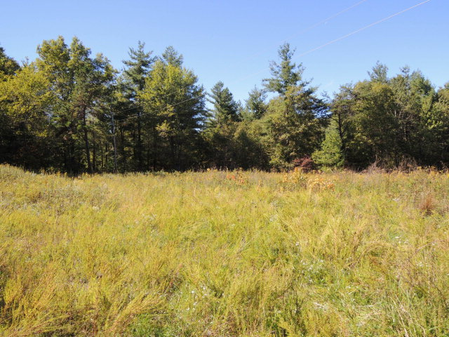 Real Estate for Sale, ListingId: 35736810, Jamestown,TN38556