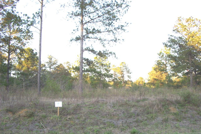 Lot 7 Sweetwater, Ft. Gaines, GA 31776