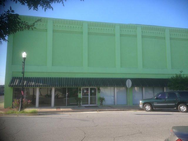 101 Mathewson Ave, Pelham, GA 31779