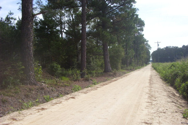 If you are looking for a mini farm, with room for animals  and all kinds of activities this may be the right property for you.Plenty of road frontage for  entry , lots of privcy in the rear. Approximately 8 acres in cultivation that is currently leased each year and the remainder in woods. Great location for a home or get away.