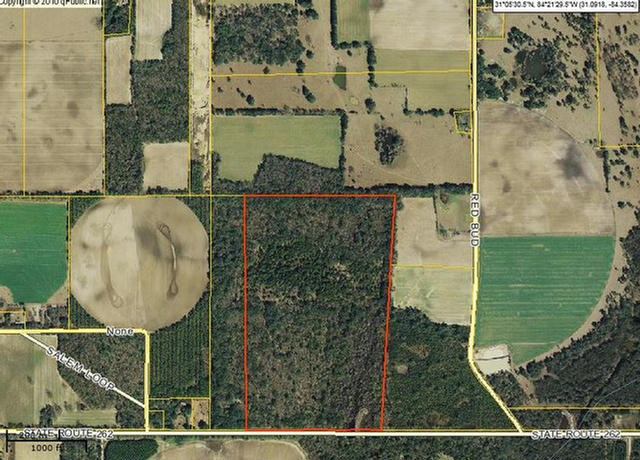 131 acres on Mitchell County /  Grady County Line.  Woodland,  No Improvements.  Great Recreational tract or to build on.  Have copy of timber cruise and plat on file.