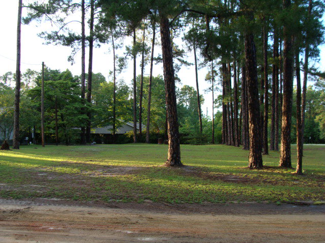 Lot 11 Harvel Pond Road, Donalsonville, GA 39845