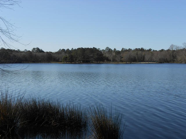 00 Riverwind Trail, Meigs, GA 31765