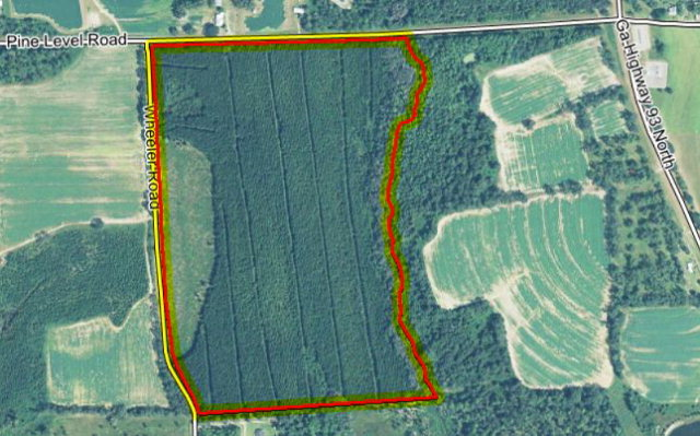 0000 Wheeler Road (73 Acres), Cairo, GA 39827