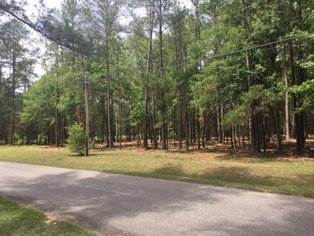 00 Spring Lake, Thomasville, GA 31792