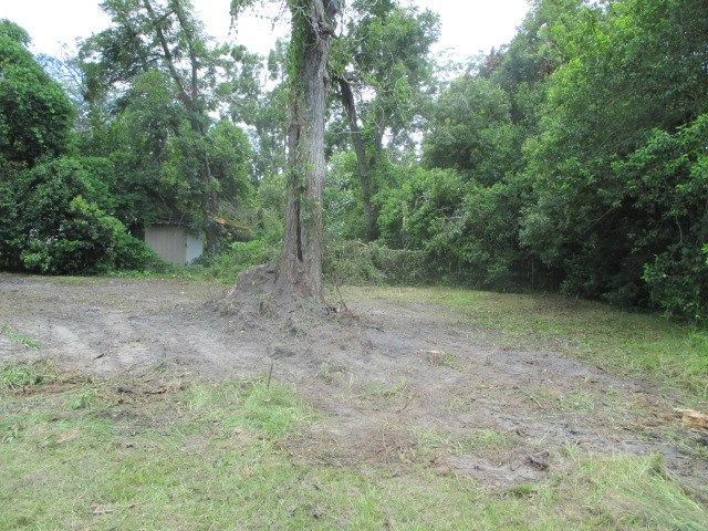 COMMERCIAL LOT ON PAVED STREET.  This l-shaped lot is partially fenced on the front and has lots of potential to be a retail store, hair/nail salon, office, or other small business.  It is a highly used street in a residential area.  There are some trees on the grassy lot.