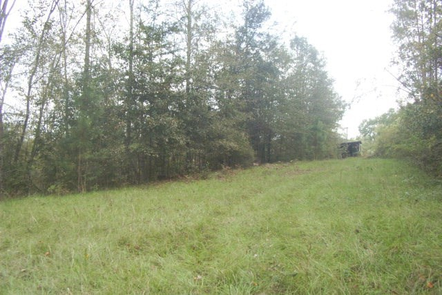 00 Black Acres Rd., Moultrie, GA 31768