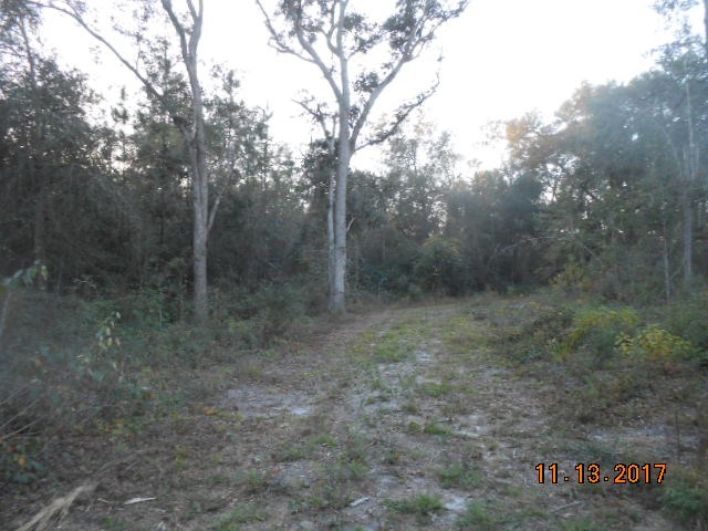 Looking for affordable acreage ? Located in Grady county. 14.03 acres. Over 400 front of paved road frontage. Wooded & possible pond site.  Abundant wildlife. No restrictions. Property is current enrolled in a Conservation Use Program that must to be continued until 2021. Priced to sell !!!