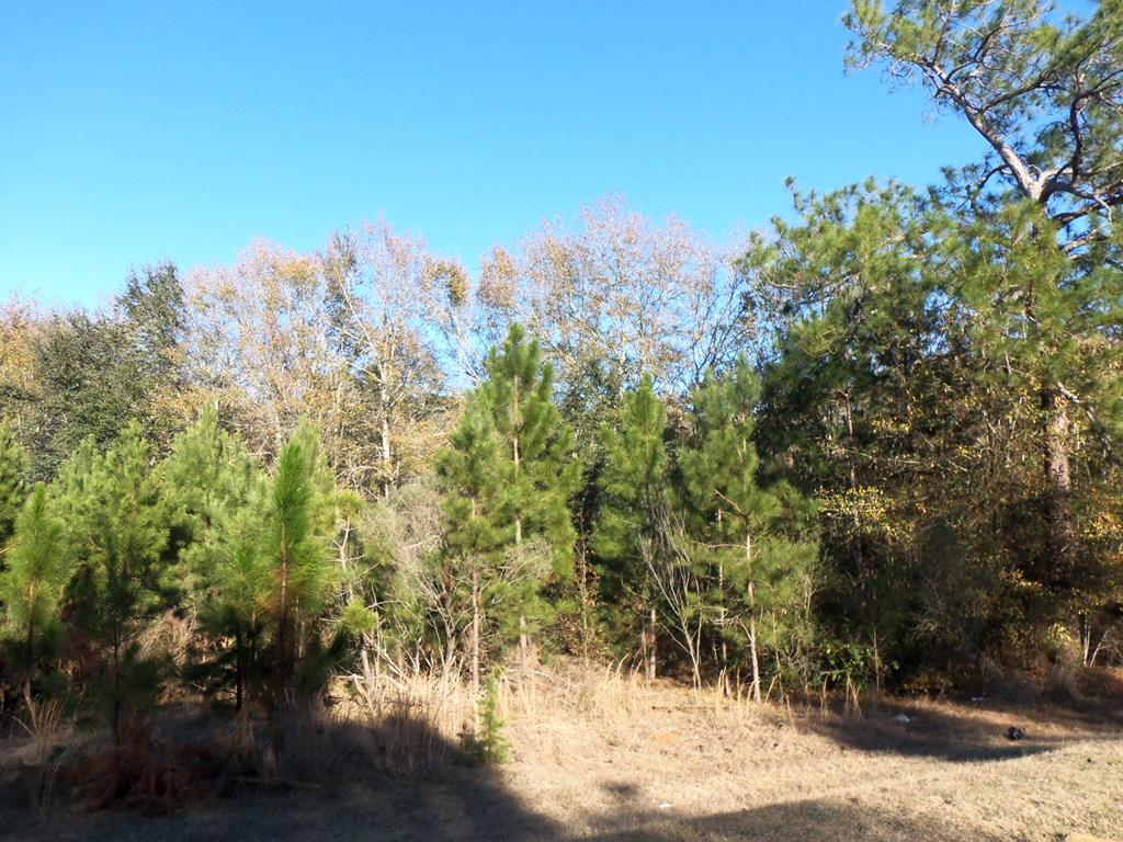 A 2.14 acre residential tract just outside of the city limits of Pelham.  The lot has city water and private septic system in place with no warranty.  The lot needs some clearing up of brush, small trees and an old single wide manufactured home.  The lot is zoned R2 for residential and approved for manufactured homes.