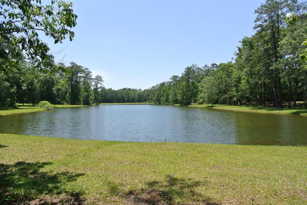 Lake Front lot on Wells Lake in Beachton Place subdivision.  Great Sunset views with the rear of the lot facing West over the lake. Conveniently located  between Thomasville and Tallahassee.    .72 Acres.  Owner financing available