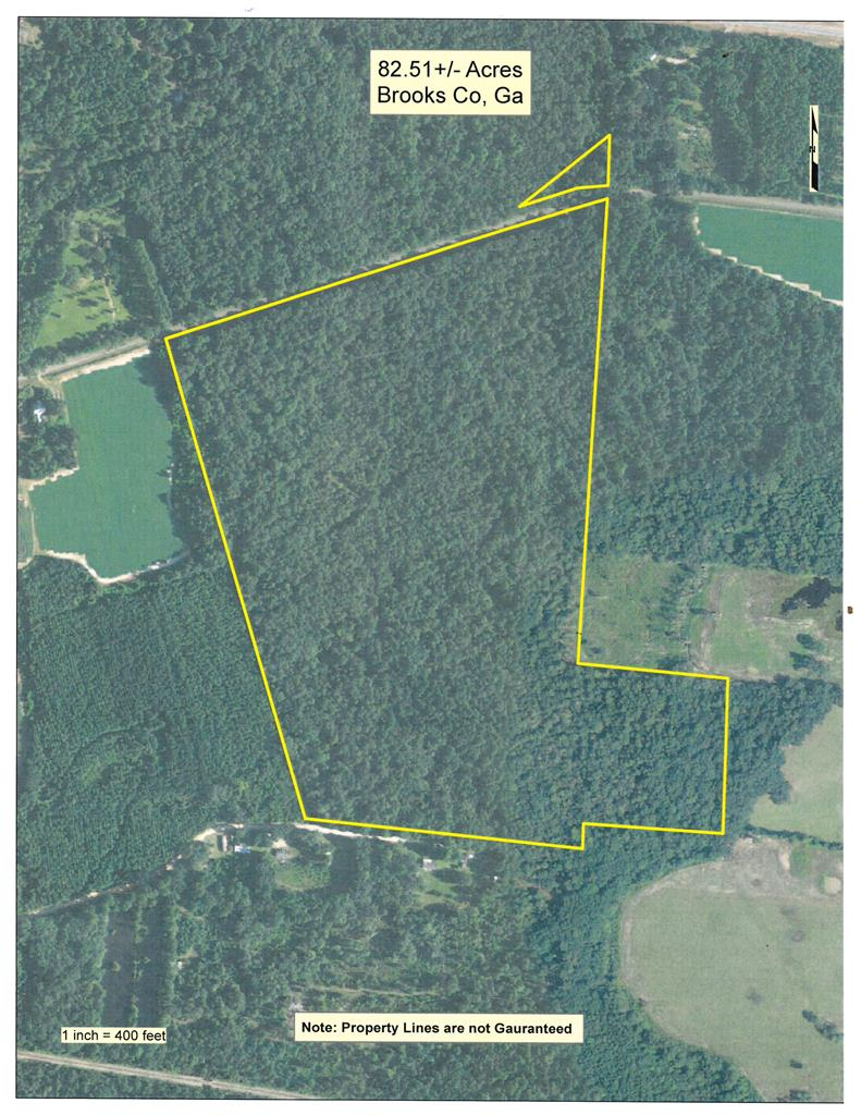 Great Hunting tract with some building sites. Property is located on Gay Mill Creek and some of the Mill works are still in place. Good paved road across front at Dixie Road. Survey shows a small parcel across Dixie Road stays with this property. There is an AG tax covenant on the property that will need to be assumed by the buyer but it is a tax advantage to the owner. Seller has done all legal work to pass clean title on the entire property.