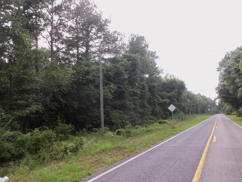 This woodland tract is a great home site with over 1,560 feet of road frontage.  Natural hardwoods and pines gives plenty of room for recreational use.