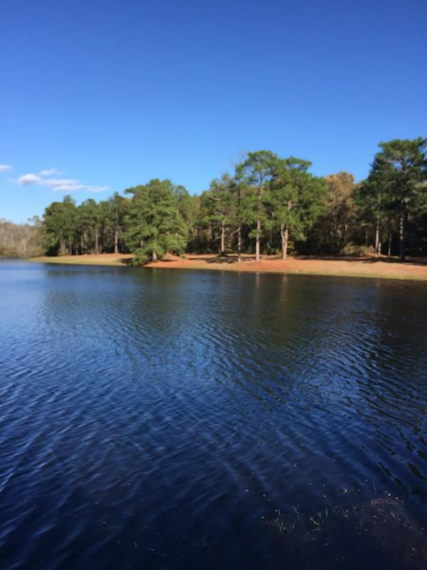 48.68 acres with a private well and underground utilities on site. Perfect spot to build your dream home on this timbered tract overlooking the lake. Lake is shared with adjoining property owner. Also great recreational tract with hunting and lots of outdoor opportunities.