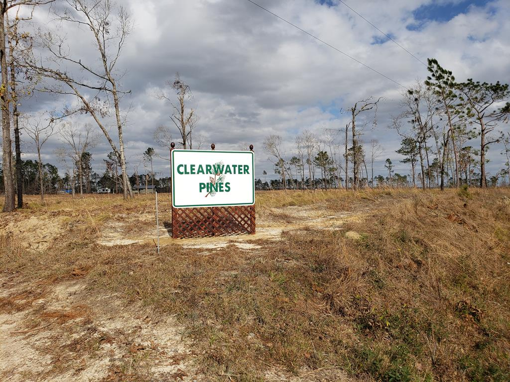 PRICED TO SELL!!! A FANTASTIC 82.17 ACRES at Lake Seminole near Cummings Landing at the end of Hwy 39. There are endless possibilities with this property. It's a GREAT investment property for a developer with individual lots already subdivided or make larger lots. There are roads and street signs throughout the property. There is an area to put in a pond and make some of the lots waterfront. There are a few lots still available on Clearwater Lake. You could purchase the property and build your dream home. Come take a look and imagine the possibilities!