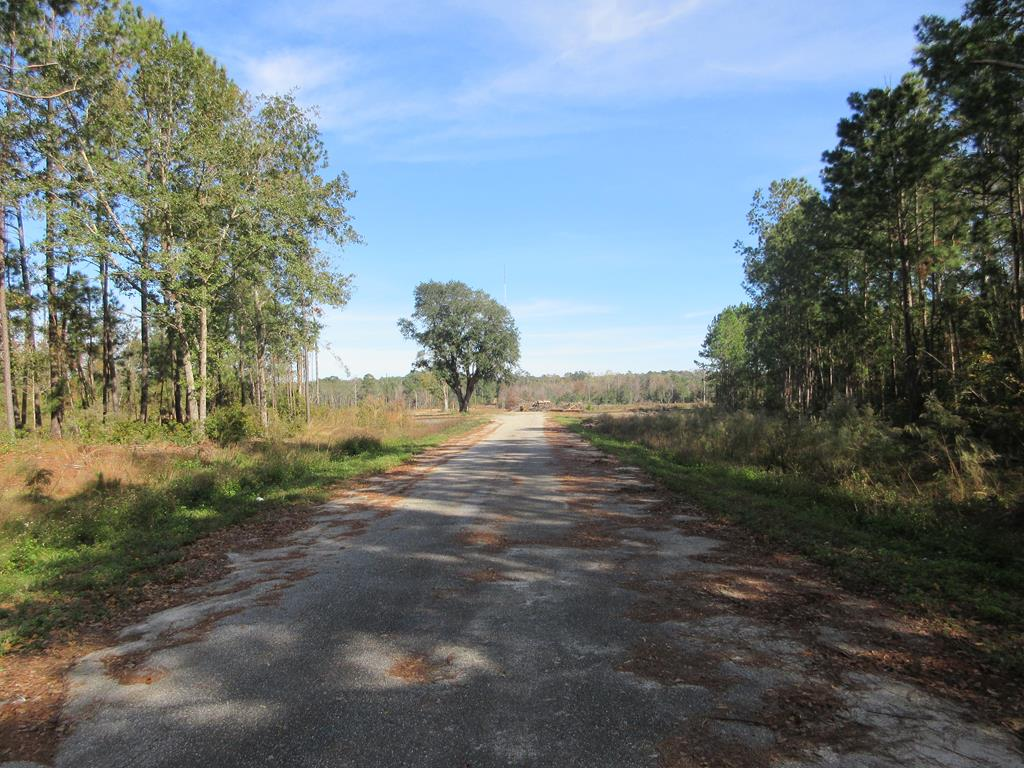 LOCATION, LOCATION, LOCATION...This 42.86 acre tract is the perfect place for a large scale apartment complex, manufacturing facility, shipping facility to be placed. Property is presently zoned AG, but does adjoin the City Limits of Thomasville and could be zoned (M) for manufacturing or left in the county and zoned RM-11 for multi-family. Property features include access to city water and sewer (Available if brought), 3 phase power (already at the property), rail for delivery and or shipping (already at the property). Development possibilities are endless for this hard to come by property in key geographic location. Property adjoins other tracts that are already zoned commercial and or manufacturing.