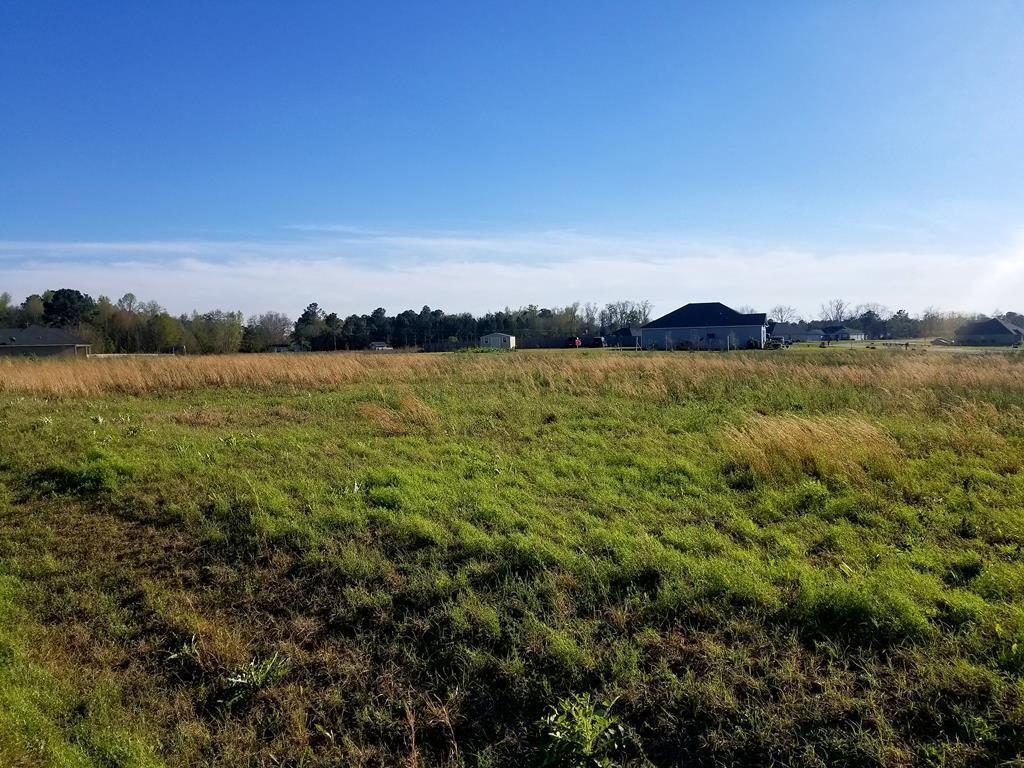 Enjoy a country setting on almost a one-acre lot in Southern Pointe Subdivision. Minutes from Thomasville's shopping, entertainment and restaurants. Community water and will need septic tank.