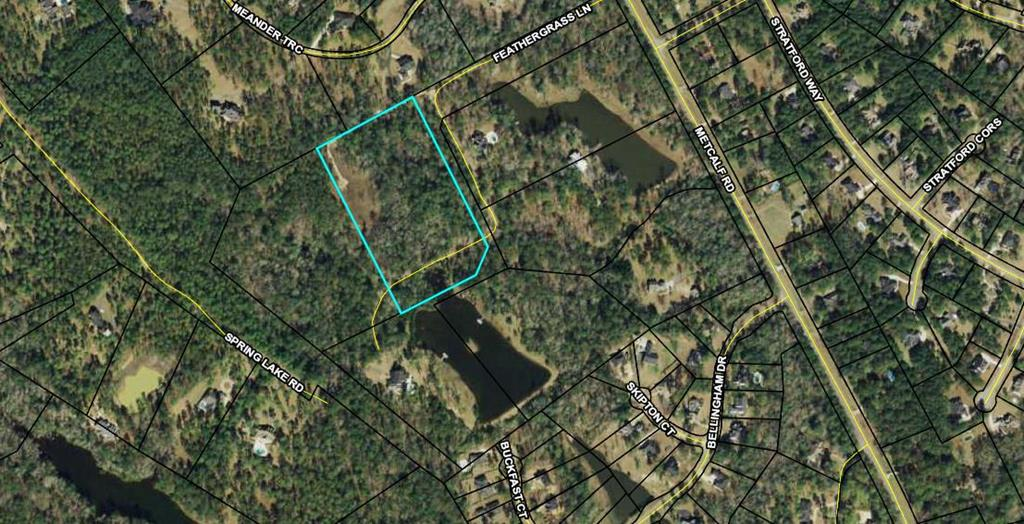 Beautiful 10 acre private lot south of town to build your dream home!  Property is high and dry, with one low spot in the back that would be perfect for adding a pond.  Lot is surrounded by stately custom built homes. Restrictive covenants apply.  Close proximity to Brookwood School and Tallahassee.