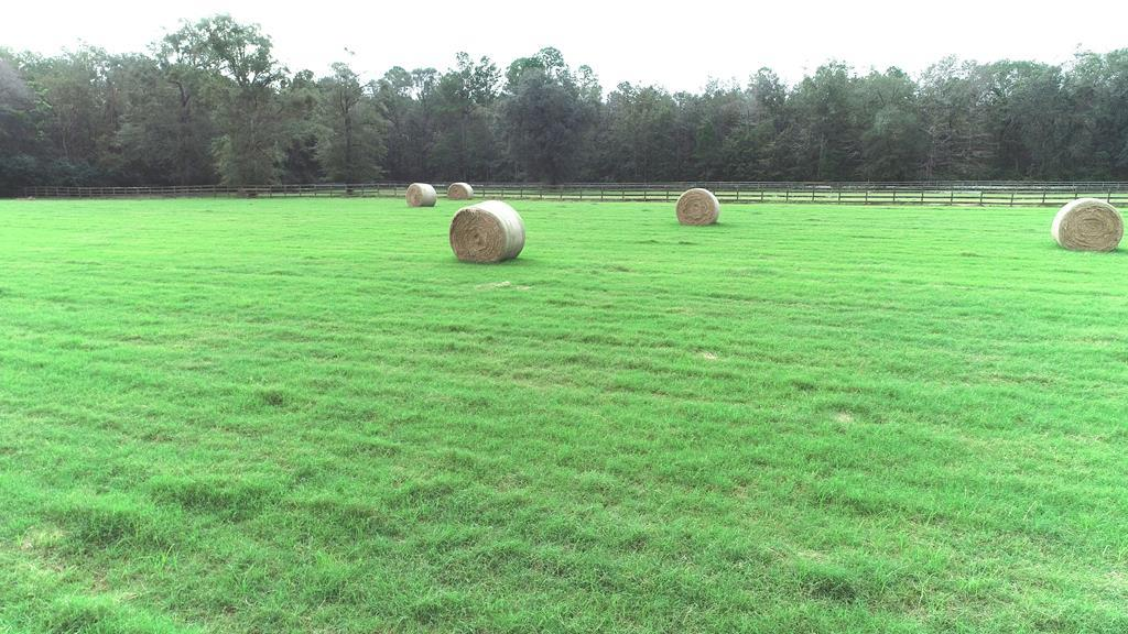 ATTN HORSE LOVERS: Surrounded by gorgeous live oaks and off the beaten path, this 15+/- acre farm in Thomas County is just what you've been looking for. This property features a farmhouse, improved pasture that's fenced and cross fenced, 5 paddocks, and two barns with 6 horse stalls and plenty of room for tack and other supplies. The cozy two-story farmhouse features 3 BR/2.5 BA, an upstairs nook perfect for an office or extra bedroom, ample storage, and a gas burning fireplace.