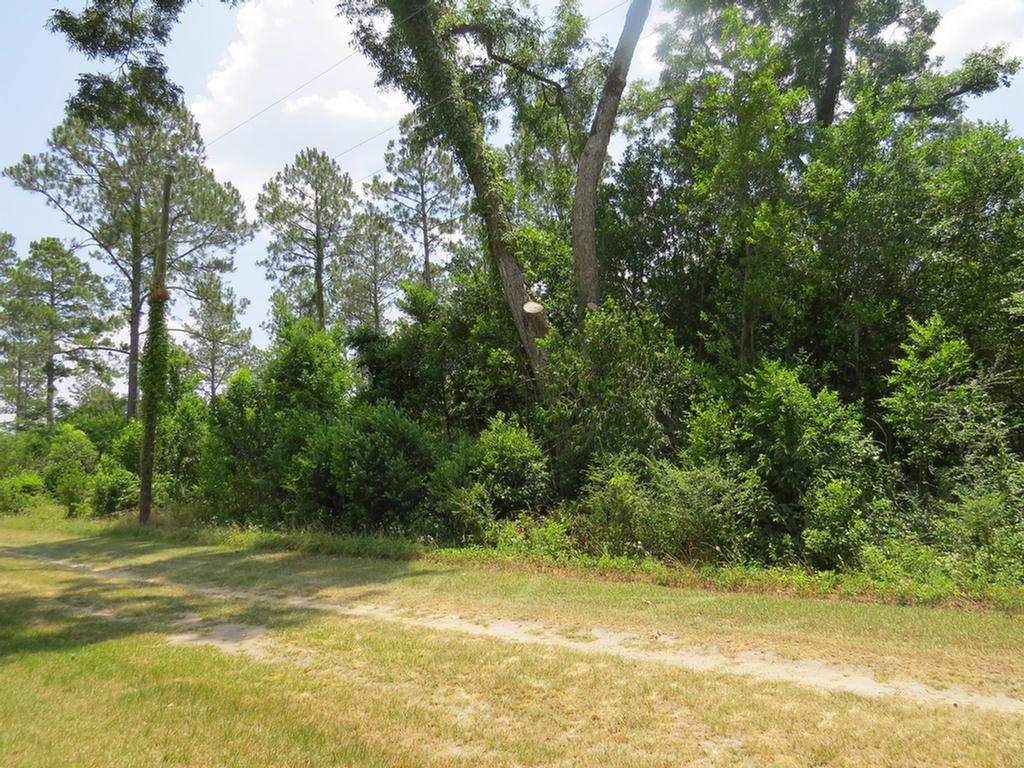 One acre lot in Barwick.  Thomas County.  Paved road frontage on one side and dirt road frontage on the other side.  City water and sewer available.  2 lots for sale.  Lot # 2 in addition to this lot.