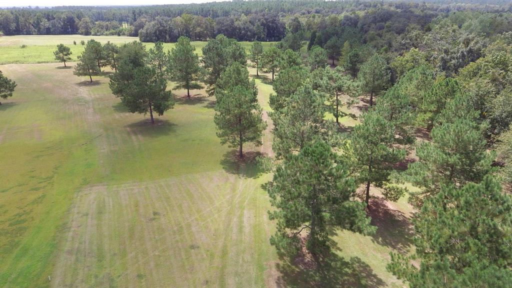 Nine acres in South Grady County.  This tract is perfect for someone wanting to be centrally located between Tallahassee, Thomasville and Cairo.  The property has a nice roll and is a mix of pasture and open woods.  What an awesome place to build your next home.  The property is less than 2 miles down Lewis Road off of Hwy 93.  Have a look at the video under the virtual tour tab.  Property will be restricted against mobile or modular homes.