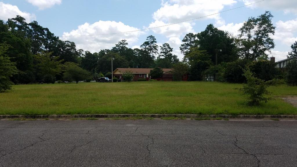 One of the last buildable lots in this well establish neighborhood is now available.  No restrictions on single family home size and you have access to all of the city amenities.  Parcel# 019 009013  Call for more details.