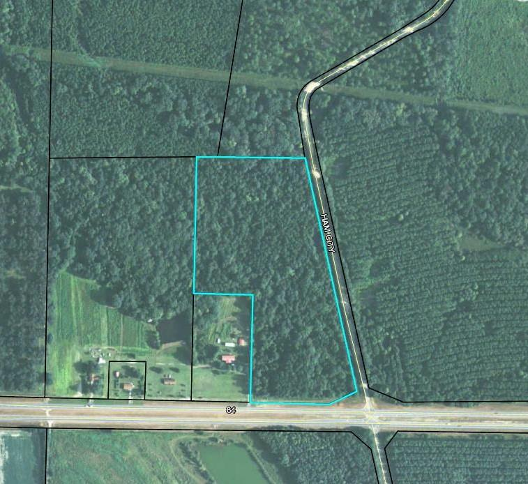 Great recreational timber tract in Brooks Co.  This tract is minutes from historic downtown Boston.....home of the Boston Mini Marathon, The Buzzery, and the  World Famous Boston Caf.  Priced to SELL!!!