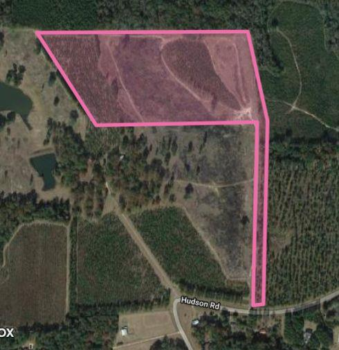 Possibly one of the best tracts with an almost perfect pond site I have ever seen.  If you ever wanted to build a sure enough pond...this property has the site  and just might have the right ground water to help.  Planted Longleaf and Loblolly.....Longleaf in CRP program.  Very nice and private home sites.  Super Deer and Turkey Tract.   Property backs up to Big Woods....Convenient to Cairo and Thomasville.  You really have to check out the lay of this pond site.  Super topography to capture surface water.