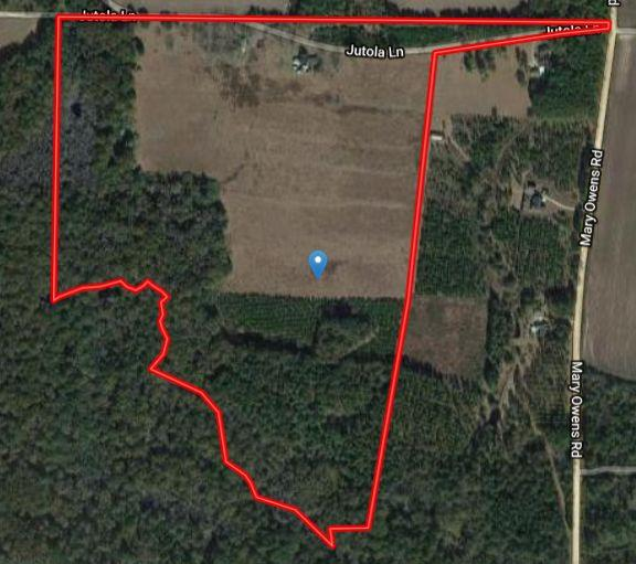 Good looking Homestead Tract with 90 Acre of land (29+/- AC in cultivation, Balance in Pine and Hardwood Creek Bottom)  Some Planted Pine.  Small Pond on prop line.  Bring your boots and come ready to explore.  The home needs some work but is very functional.  Excellent curb appeal.  This property feels good from the moment you drive up.  Amazed at the amount of white top clover in the field....it is truly a bed of clover!  There are about 20+ mature pecan trees and all kinds of buildings and barns you would normally associate with old homestead tracts...right down to an old log cabin and some old writings from days gone by of Indians and other happenings!  Good roll to property.  Lots of wildlife.  Chicken Pen, Old dug well, deep well, just a whole lot of property to take in!  Still gathering pics and info.  The creek bottom of Big Creek is a whole other property in itself.  That is a major creek system with all kind of discovery to be had.  Trees, Plants and critters!  AG COVENANT