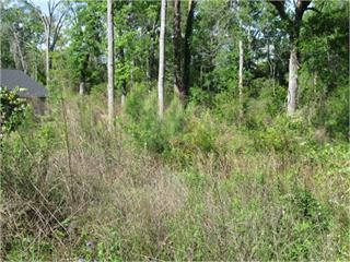 -   Buildable Lot inside City Limits.  .3 acres,  convenient location with good comps in the area for a spec house. Parcel #  003 039011 B