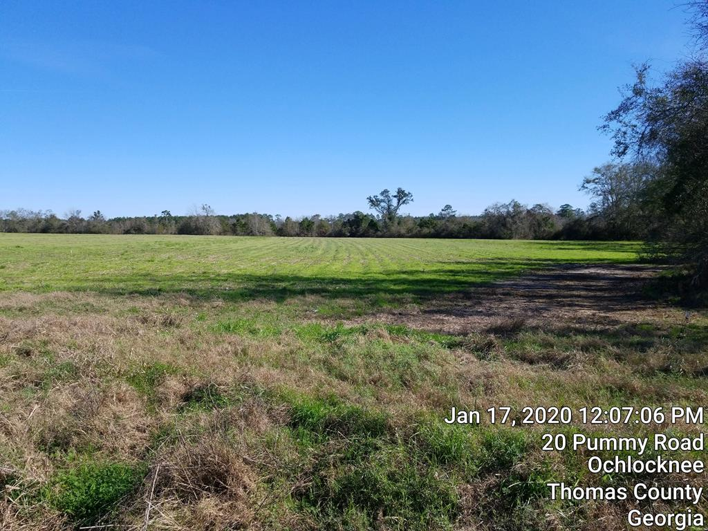 Live, hunt, farm AND play on this 36.66 acre tract with many options!  Approximately 16 acres has been farmed and the balance is wooded with abundant wildlife.  The property line is middle of the creek on the East side.  Entrance from Collier Road.  Owner is licensed Ga. Real Estate Licensee #173188.