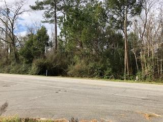 Beautiful wooded lot nestled near county/ city limit boarder. Close to shopping, city and county schools, and recreation, this lush 1.93 acer lot offers great possibilities . The lot features wetlands and a creek on the south boarder and  possible home site near the northern boarder. City utilities and other conveniences are a nice compliment to this rustic setting.