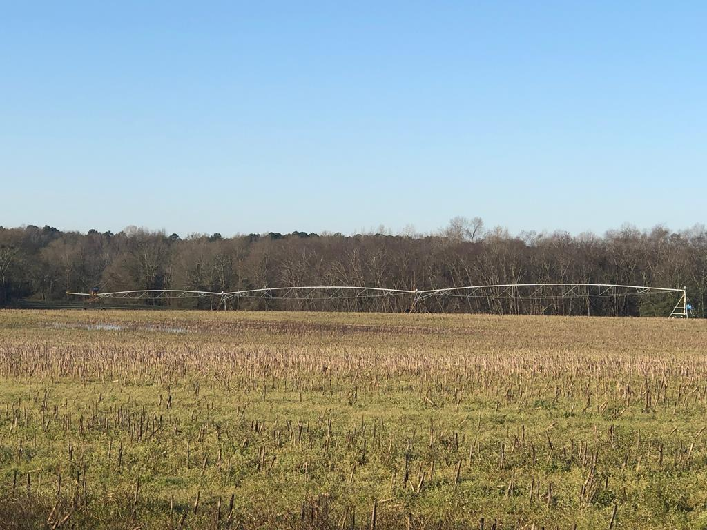 Highly productive irrigated farm with 1098 acres in Macon County Georgia.  Farm consist of 11 pivots and 4 permitted wells. Improvements include 3 homes and 2 equipment shelters. Seller is open to a leaseback from purchaser.
