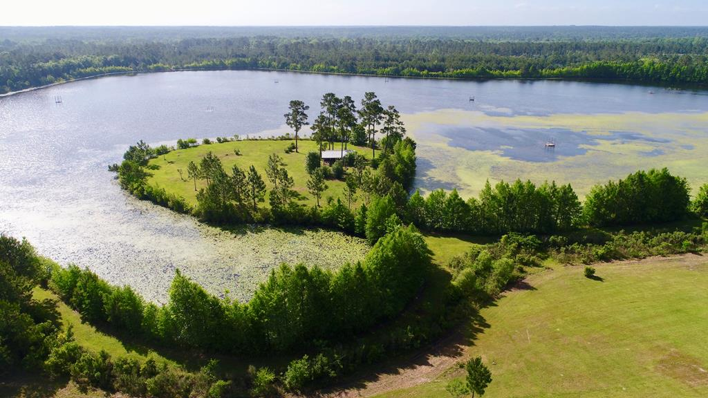 The property itself is extremely diverse. While clearly the lake is the focal point, ancient live oaks are scattered around the property.  Several ages classes of pines exist, ranging from 12 year old longleaf to fully mature loblolly.  Established food plots have been established throughout this portion of the property.  These areas provide good habitat for deer and turkey and create a full array of wildlife and recreational possibilities. This piece can be purchase with an additional 149 acres.. please see mls #914739