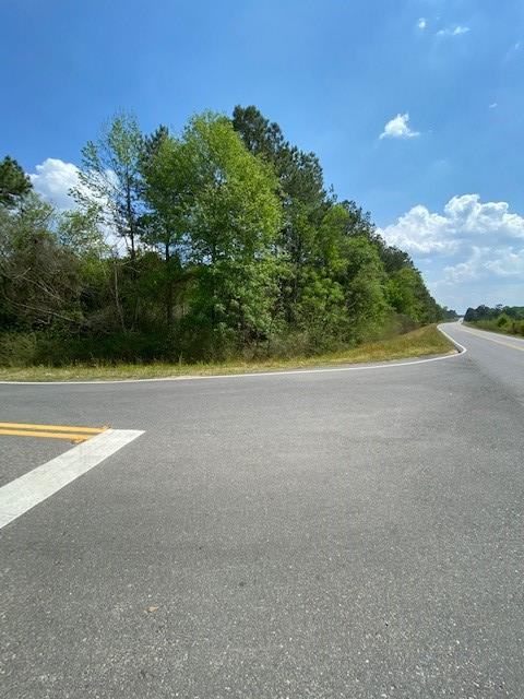 15.61 acre lot, wooded and corner lot, road frontage. Possible pond site. No restrictions. Bank Owned