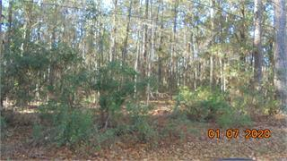 Convenient location between Thomasville and Tallahassee in a prestige neighborhood.   Short distance to all the schools but closer to Brookwood private School.   This wooded lot is waiting for a family to build a home.  Requirements are 2500 sq ft minimum, single family.  No subdividing and no lake access.  You have access on a private driveway to the lot and pay an annual fee of $125 to use it.   You would install your own well and septic tank.   Call and ask Listing Agent for all information.