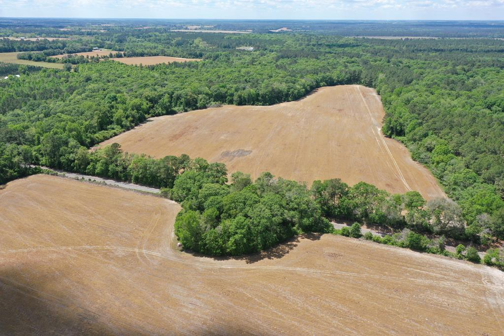 Good looking farm/recreation/home site tract.  50+/- Acres of Cultivation (48 Generic Base Acres)  Big Woods all along Big Creek.  Turkey and Deer Powerhouse Tract.  Very Private.   11.6 mile from Thomasville  Good roll to property.  Good looking pond sites.  Nice feature trees of Big Oaks and Pine.  Priced at appraised value of $410K.  Deed calls for 121 Acres but measurement and tax records call for 148.  New survey advised.  Checking with DOT about opening up 319 frontage.  Currently accessed through Jutola Lane.  (In process of mowing that)  Property can be combined with 309 Jutola Lane listing of 90 acres with 3BR 1 Bath home for a total acreage of 238+/- Acres.  Different Owners.  Property in Ag Covenant...helps lower taxes...must be assumed  Good Dog Training tract.  Property has a rail road cross over.  Very unique property.  That is a powerful creek bottom worth exploring.  Just bring your boots, bug spray and a big stick!  Working on Drone Video and more creek bottom pics.