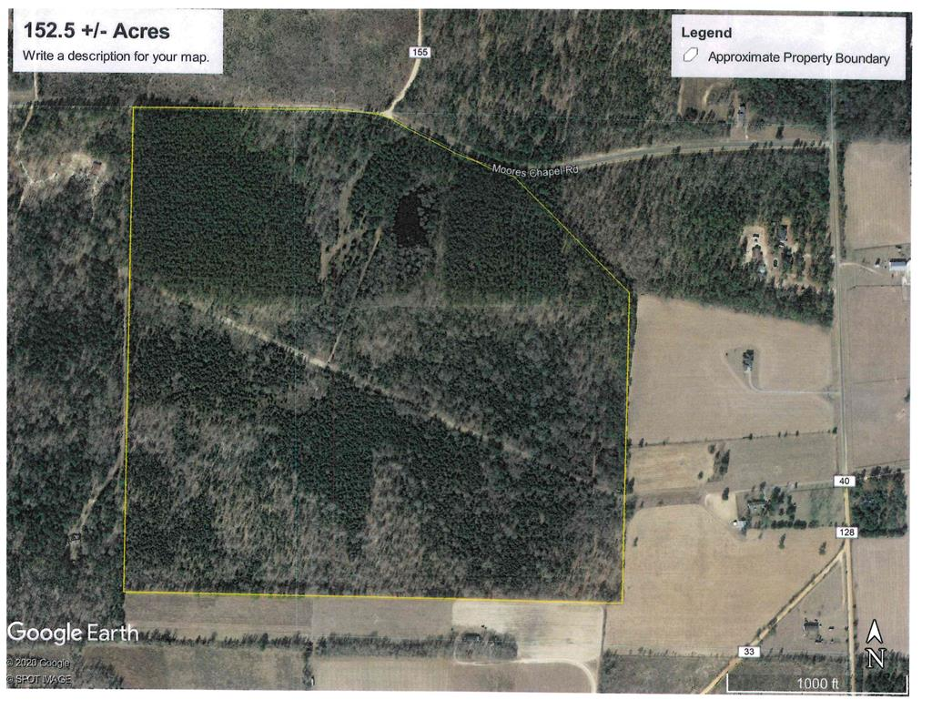 152.5 +/- acres in Both Marion and Taylor Co. This property would be a great place to build a home or a cabin for a weekend hunting retreat. There are some mature natural pines and hardwoods and planted loblolly pines that need to be thinned with the rest of the property in natural regenerated pines and hardwood. There is also an approximately 1.5 acre pond that would make a good fishing hole.