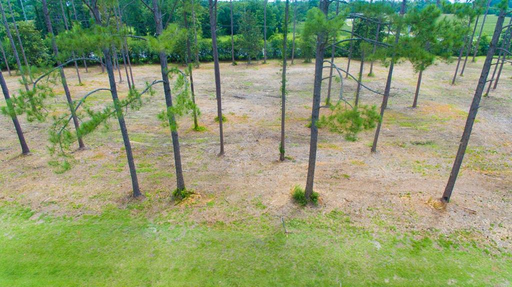Beautiful Residential building lot in Exclusive Magnolia Estates Subdivision located in Cairo, GA. This beautiful 1.49 acre lot is across the road from Tired Creek Golf Course and conveniently located off of Hwy 84.  Tired Creek Golf Course is an 18 hole facility located in Cairo, GA. At the end of Magnolia Drive is golf cart access to the Golf Course.