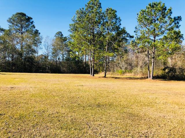 Beautiful piece of property to build your dream home!  Septic tank and possible shared well.  Call today for more details.