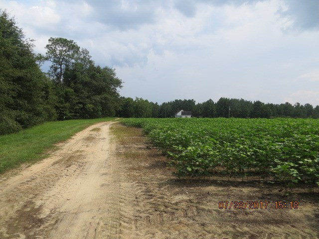 Approx 12 acre property with a  current lease and will be expiring in November collecting $600 in income from cotton.  Partially wooded and also cleared.  Property has access through a non-exclusive easement.  Close to town. Just north of Wal-Mart approx 5 miles. There is no road frontage although a nonexclusive easement.