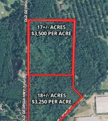 Good looking home site tract with 17 Acres.... Northern most tract ....good roll, big mature pine, excellent soils map.  GA 3 paved road frontage.  Super private home sites in these woods.  Not restricted.   Deer and Turkey in the area.  Firebreaks on property for easy viewing.  Additional land available  up to 35 acres total.  Seller dividing.  Survey will need to be updated.  Southern parcel of 18+/- Acres also available for $58,500 per acre.  Property suitable for multiple homes.  Your really have to get out on the property and walk the firebreaks.  See drone video.  This is good looking land.  Soil maps don't lie!    Just north of Pelham  and super convenient to Hwy 19 for getting back to Thomasville or heading up to Camilla or Albany.  SUPER POND SITE ON THIS TRACT!!