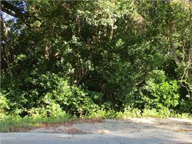 Vacant lot .91 acres. Residential lot.