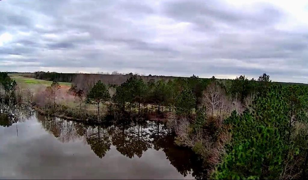 This property consists of aprox 145 acres approx which feature 2 ponds with excellent hunting that includes pines and hardwoods.  The property is located in Ben HIl county just North East of Tifton GA and approx 10 miles North West of Fitzgerald GA...  It is also approx 30 min away from Interstate 75.    It currently leased month to month with seasonal hunting which features DROVES of Turkey, deer, and quail. The property is in an agriculture covenant which is approx 2 years in.  145 Acres of road frontage with 2 ponds on it..  Possibly subject to survey.  APT. ONLY ACTIVE HUNTERS ON PROPERTY for safety purposes.  24 Hr Notice.