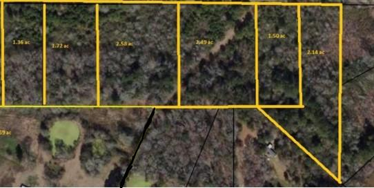 wooded lots right outside the city of Cairo. Lots have city gas availability. Lots are great for an investor that would like a mini subdivision of small homes or mobile homes. Property has great potential. This is a unique property with acreage minutes from the city, shops, schools & hospitals. All offers will be considered.
