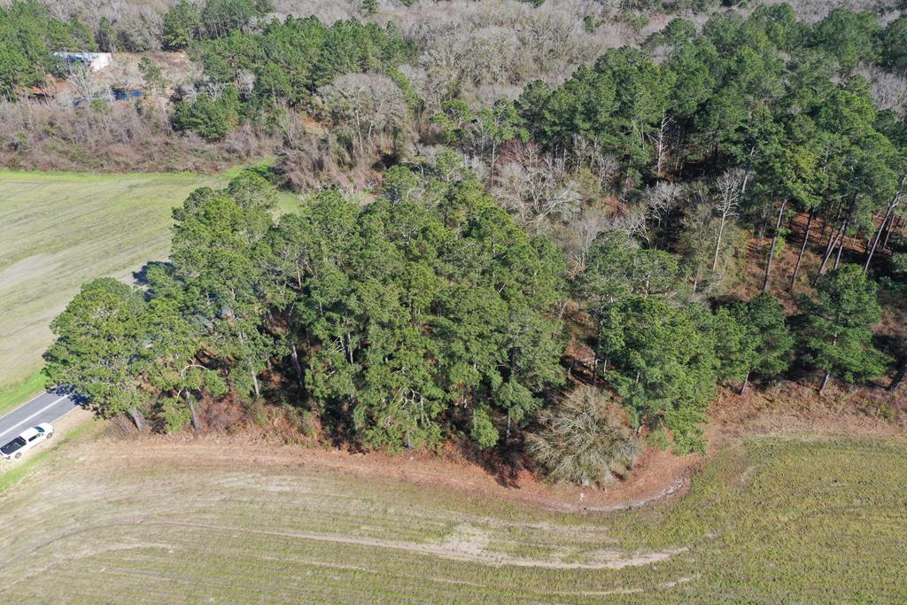 Hard to find residential building lot out in the country with no neighbors as far as the eye can see.  Towering Pines, Gentle Slope to the land and Wide Open Fields and Big Woods all around property.  Recorded survey with 321 Foot of Road Frontage.  Zoned AG.  Suitable for site built home or mobile home.  No restrictions.  Property would need septic tank and well.  Consult with county and health dept for approval.  Property needs a good mowing with a mulcher  but could be a fantastic home site.  Just the right size for a home and barn/workshop.