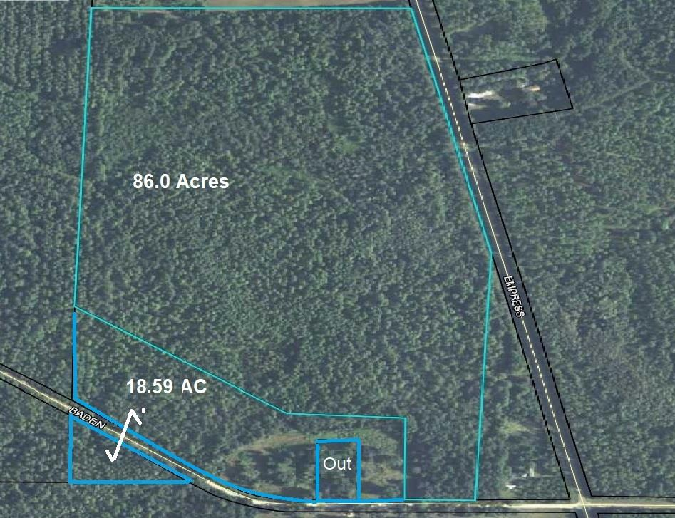 This great hunting tract is hitting the market  just in time to get ready for deer and turkey season and Brooks County, GA is known for its BIG deer .!  Property is located next to large timber tract with paved and dirt road frontage.  A small acreage tract with mobile home may be included. Don't miss this one... it won't last long!!  Shown by appointment