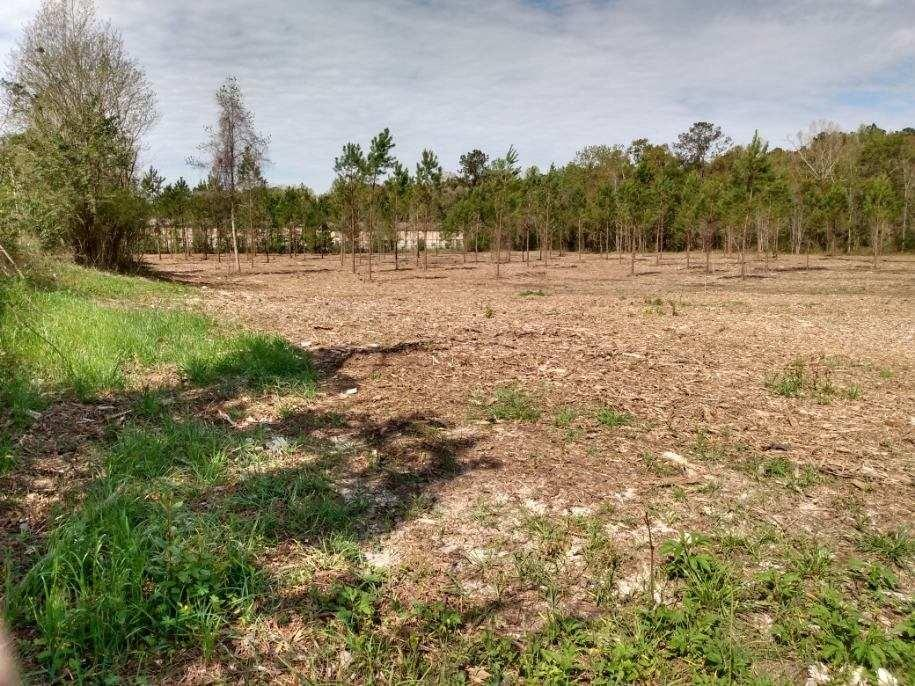 Here is your blank canvas! For your consideration is 6 acres of cleared commercial property. Suitable for storage units, duplexes, farmers market, office buildings, etc. Bring all offers!!