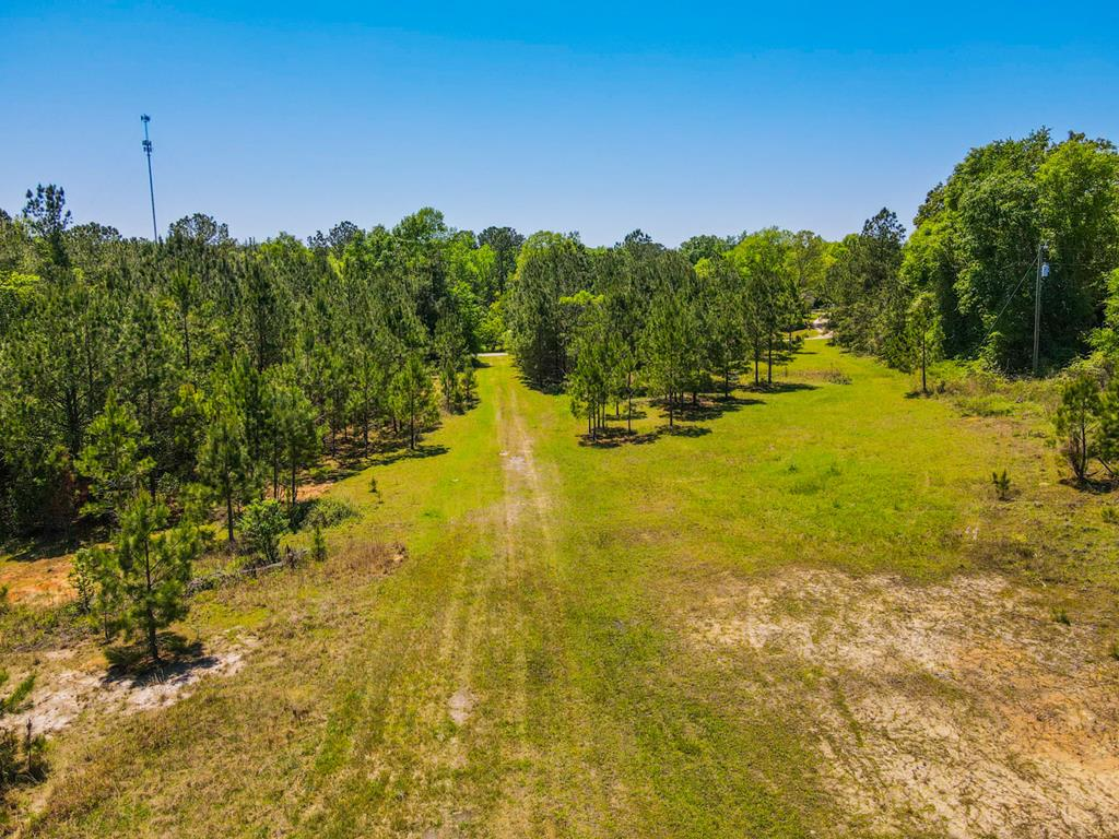15 acres of rolling South Georgia hills surrounded by planted pines with hard woods at the rear of the property. Located just outside Whigham in Grady County. This property has a cleared homesite with utilities in place, two septic tanks, and paved road frontage.